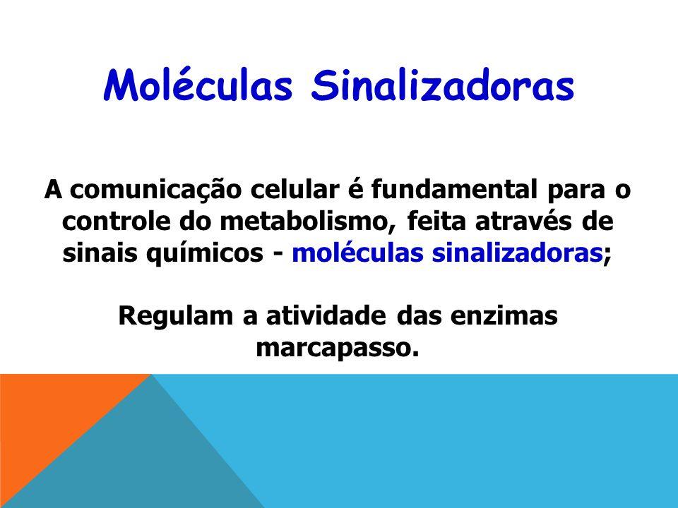 A comunicação celular é fundamental para o controle do metabolismo, feita através de sinais químicos - moléculas sinalizadoras; Regulam a atividade das enzimas marcapasso.