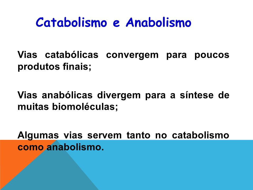 Catabolismo e Anabolismo Vias catabólicas convergem para poucos produtos finais; Vias anabólicas divergem para a síntese de muitas biomoléculas; Algumas vias servem tanto no catabolismo como anabolismo.