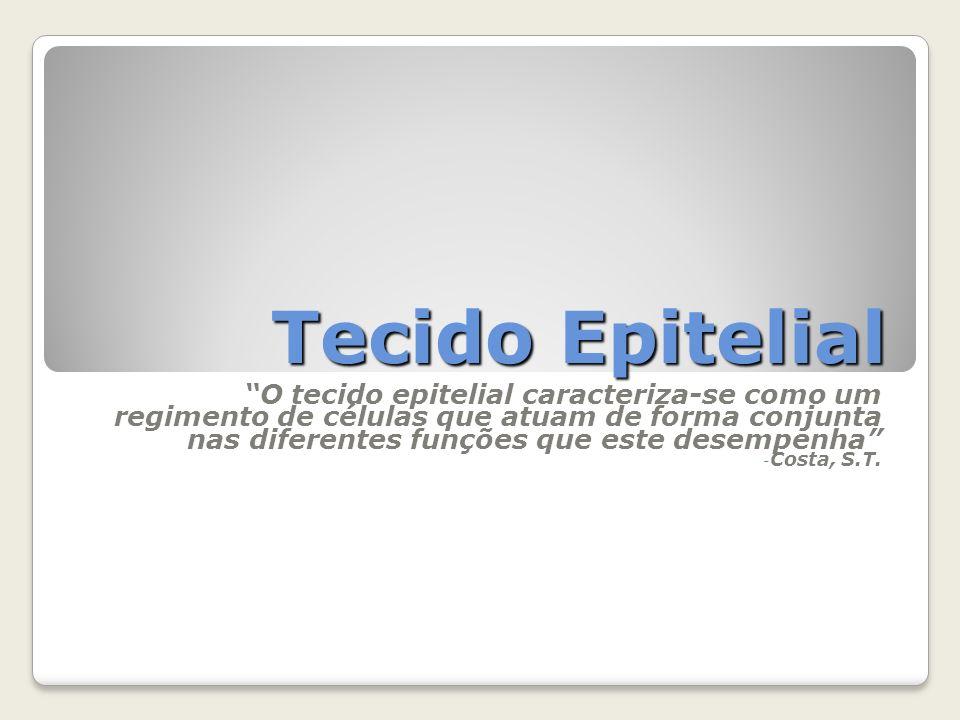 Tecido Epitelial O tecido epitelial caracteriza-se como um regimento de células que atuam de forma conjunta nas diferentes funções que este desempenha