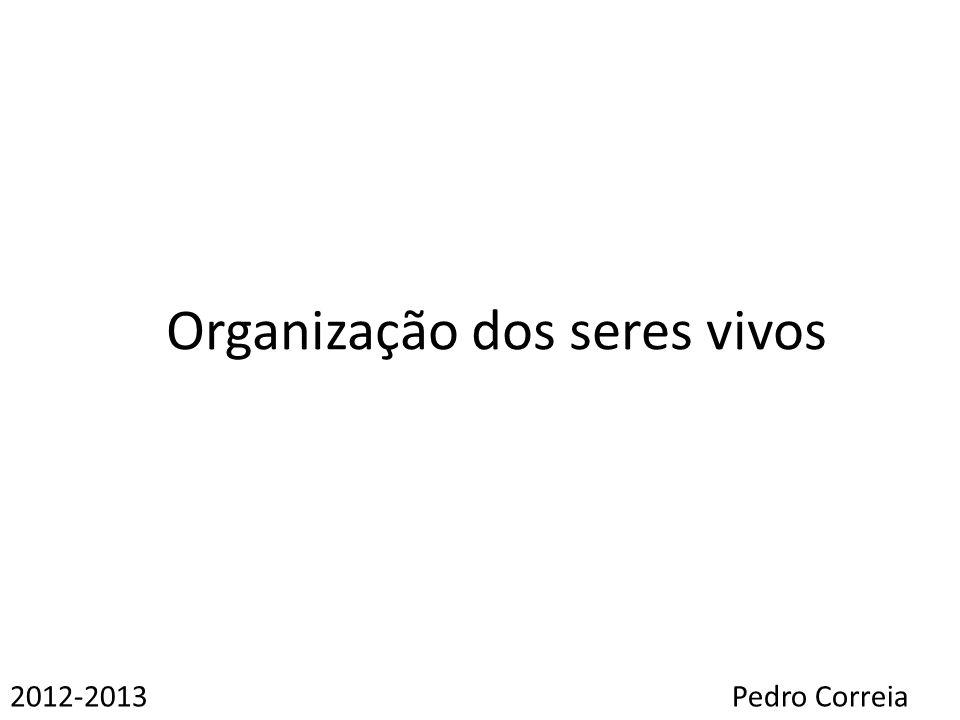 Organização dos seres vivos 2012-2013Pedro Correia