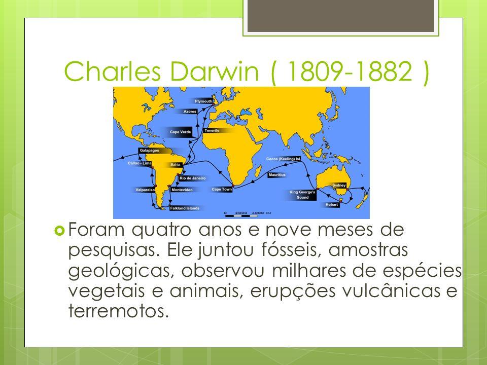 Charles Darwin ( 1809-1882 ) Foram quatro anos e nove meses de pesquisas. Ele juntou fósseis, amostras geológicas, observou milhares de espécies veget