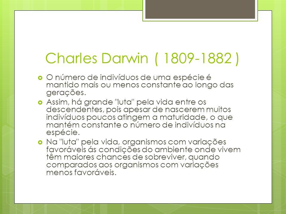 Charles Darwin ( 1809-1882 ) O número de indivíduos de uma espécie é mantido mais ou menos constante ao longo das gerações. Assim, há grande