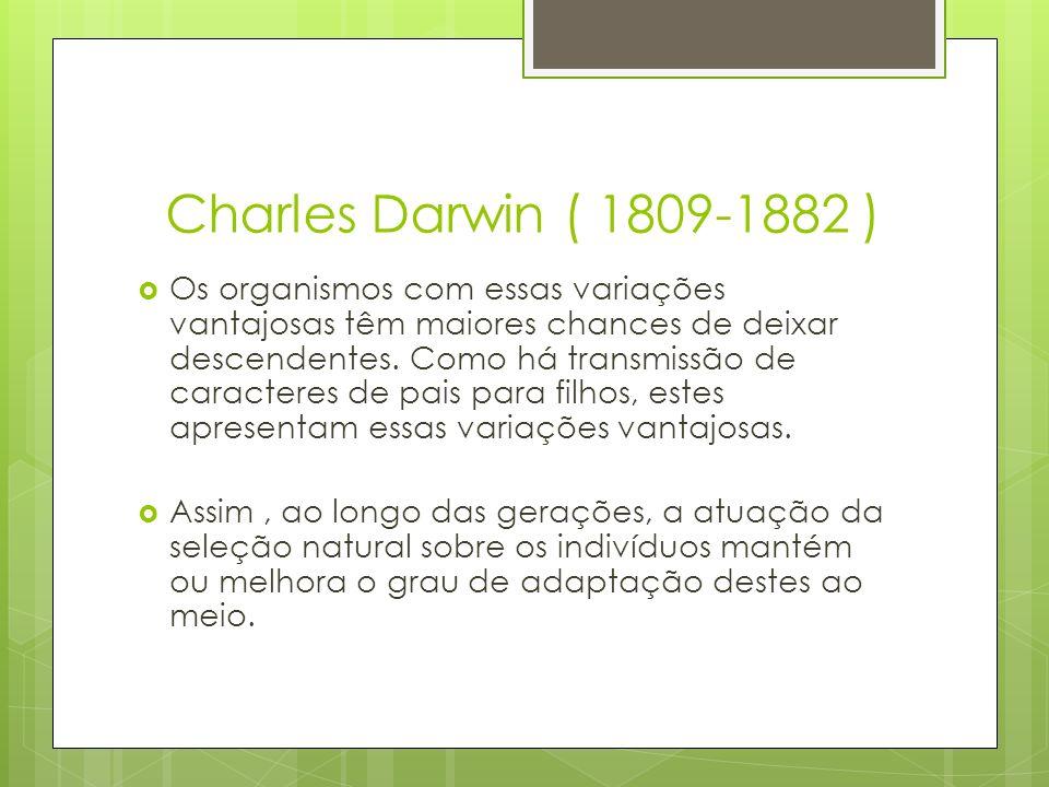 Charles Darwin ( 1809-1882 ) Os organismos com essas variações vantajosas têm maiores chances de deixar descendentes. Como há transmissão de caractere