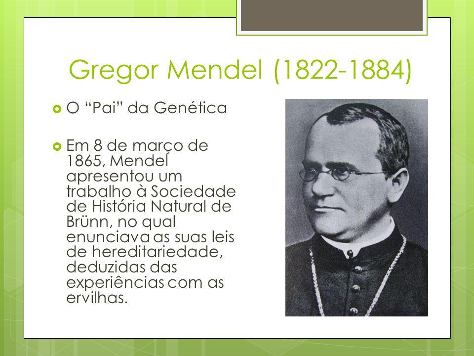 Gregor Mendel (1822-1884) O Pai da Genética Em 8 de março de 1865, Mendel apresentou um trabalho à Sociedade de História Natural de Brünn, no qual enu