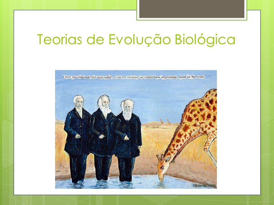 Teorias de Evolução Biológica