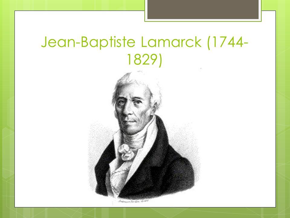 Jean-Baptiste Lamarck (1744- 1829)