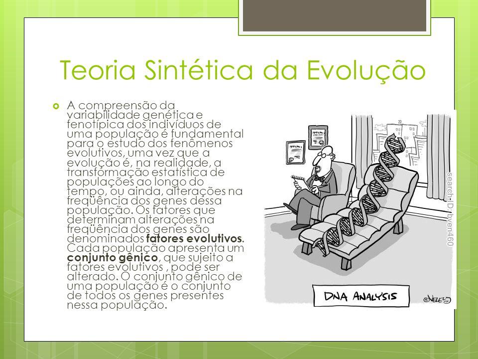 Teoria Sintética da Evolução A compreensão da variabilidade genética e fenotípica dos indivíduos de uma população é fundamental para o estudo dos fenô