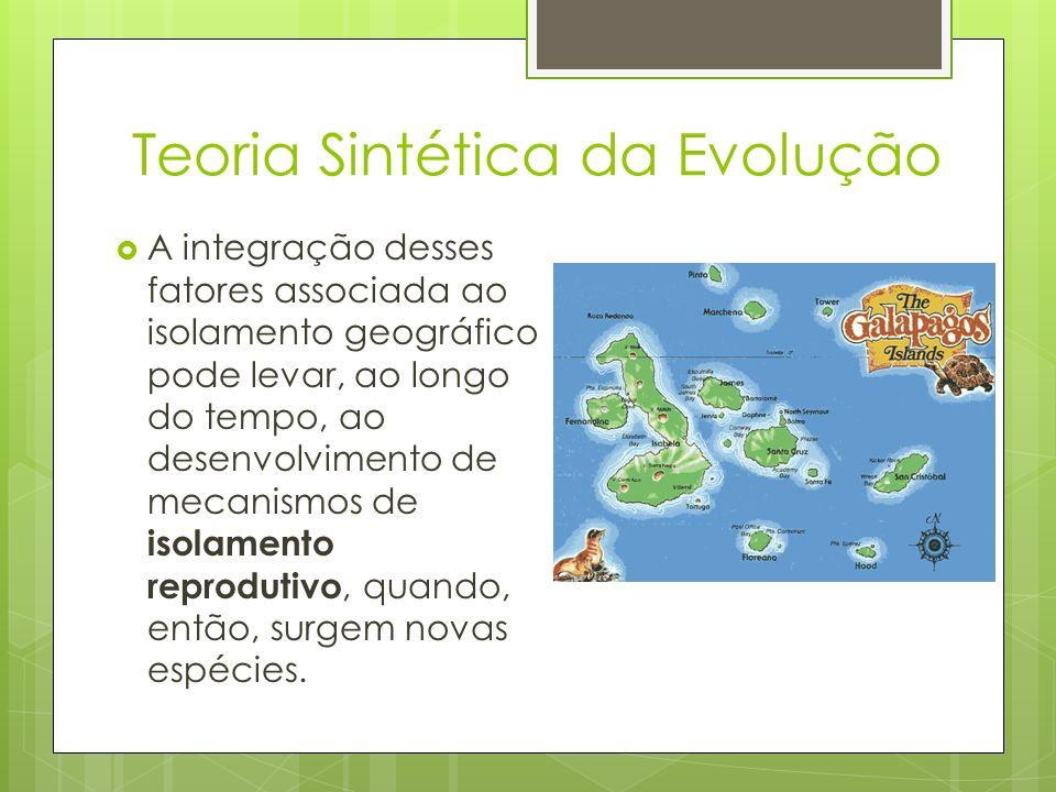 Teoria Sintética da Evolução A integração desses fatores associada ao isolamento geográfico pode levar, ao longo do tempo, ao desenvolvimento de mecan