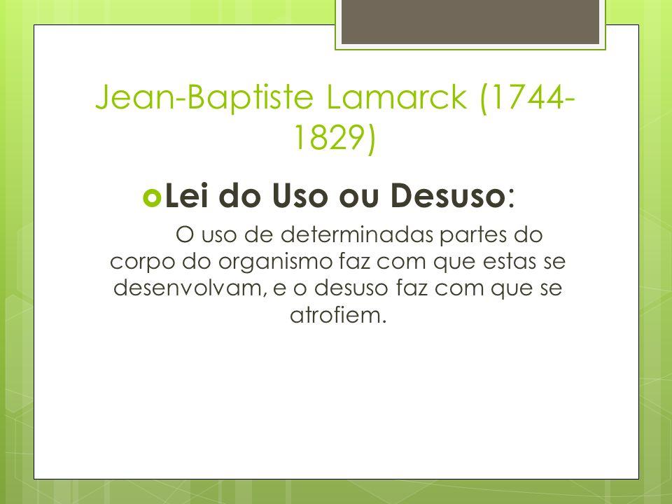 Jean-Baptiste Lamarck (1744- 1829) Lei do Uso ou Desuso : O uso de determinadas partes do corpo do organismo faz com que estas se desenvolvam, e o des