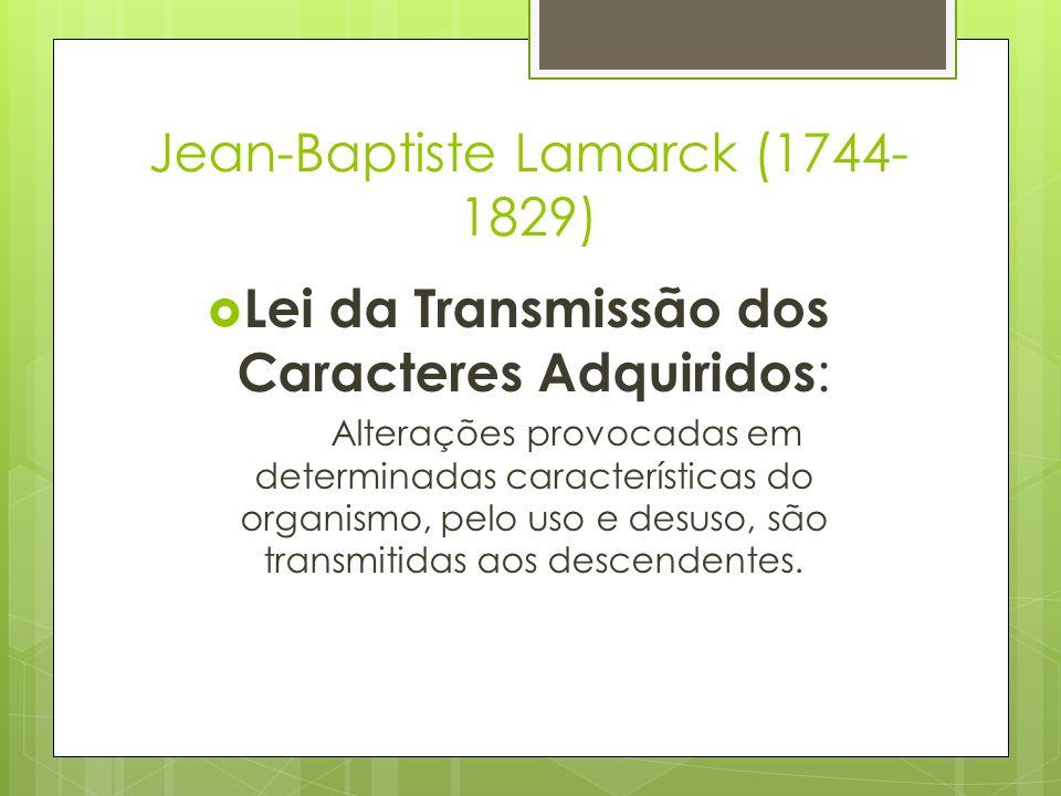 Jean-Baptiste Lamarck (1744- 1829) Lei da Transmissão dos Caracteres Adquiridos : Alterações provocadas em determinadas características do organismo,
