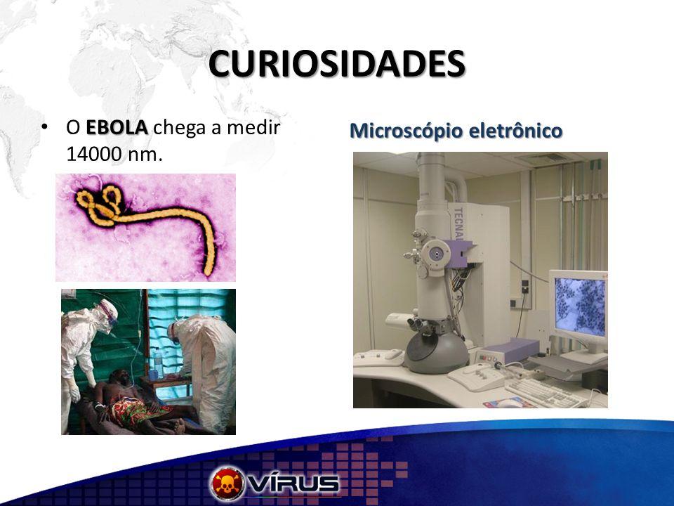 CURIOSIDADES EBOLA O EBOLA chega a medir 14000 nm. Microscópio eletrônico