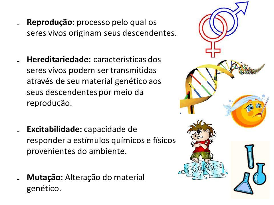 Reprodução: processo pelo qual os seres vivos originam seus descendentes. Hereditariedade: características dos seres vivos podem ser transmitidas atra