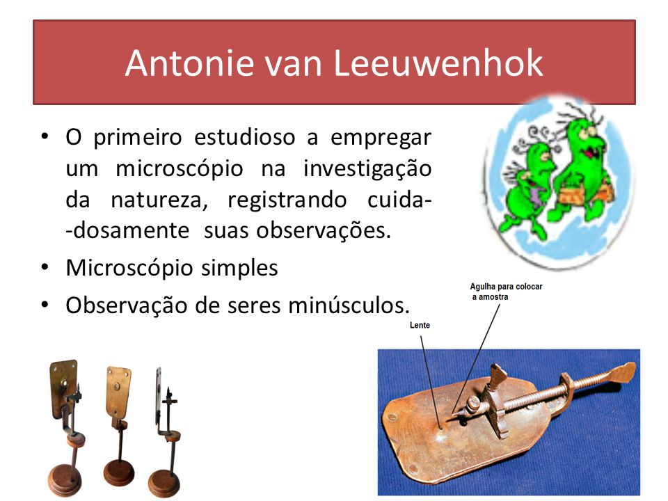 Antonie van Leeuwenhok O primeiro estudioso a empregar um microscópio na investigação da natureza, registrando cuida- -dosamente suas observações. Mic