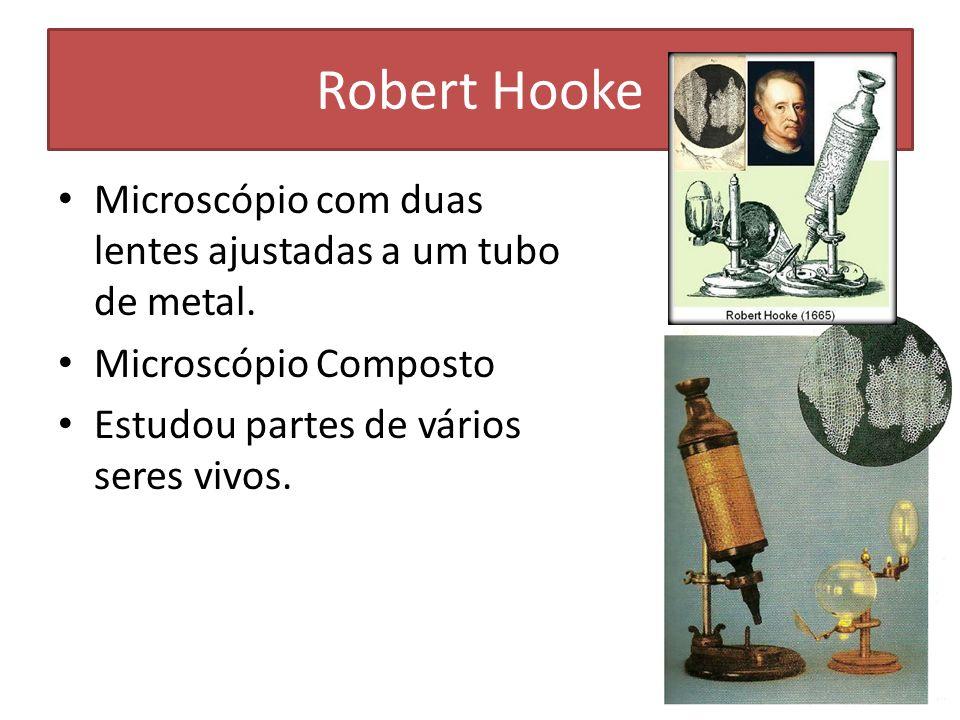 Robert Hooke Microscópio com duas lentes ajustadas a um tubo de metal. Microscópio Composto Estudou partes de vários seres vivos.