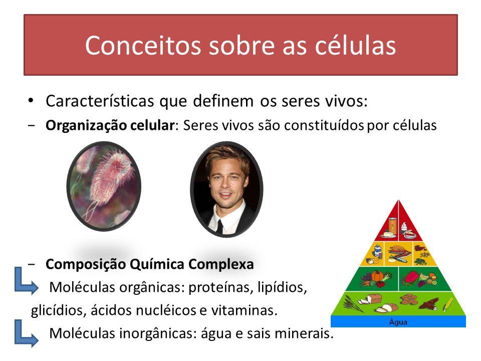 Conceitos sobre as células Características que definem os seres vivos: Organização celular: Seres vivos são constituídos por células Composição Químic
