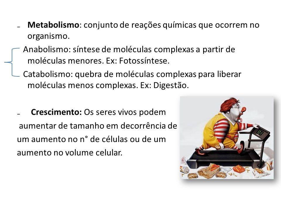 Metabolismo: conjunto de reações químicas que ocorrem no organismo. Anabolismo: síntese de moléculas complexas a partir de moléculas menores. Ex: Foto