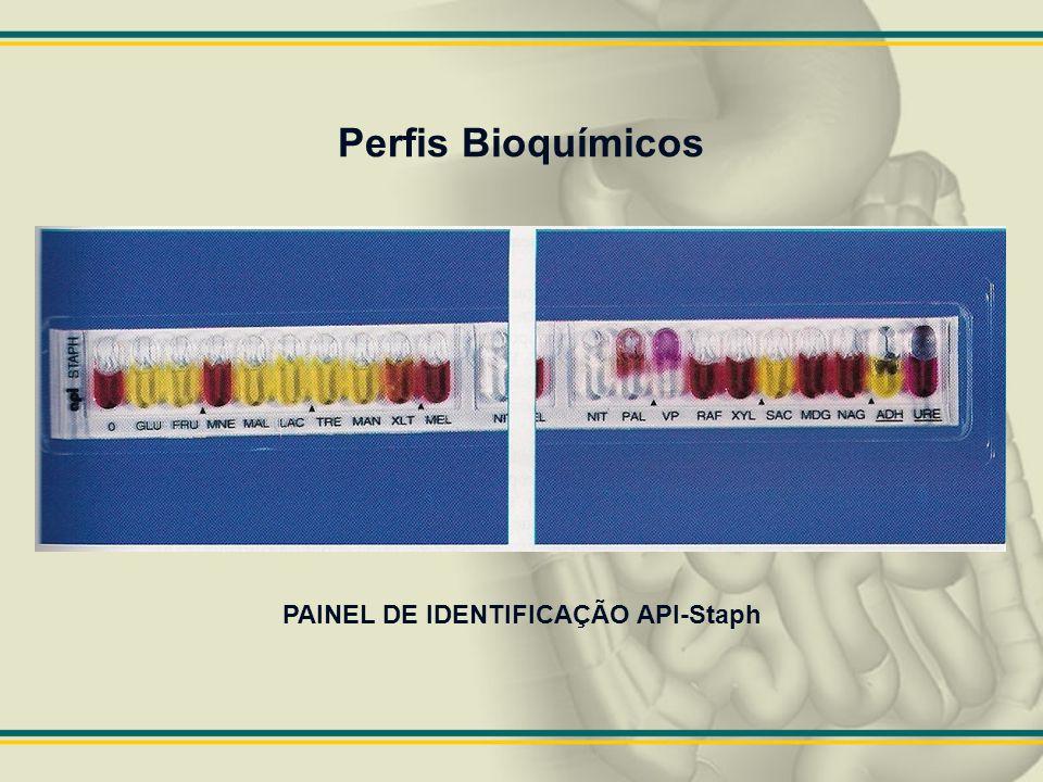 Perfis Bioquímicos PAINEL DE IDENTIFICAÇÃO API-Staph