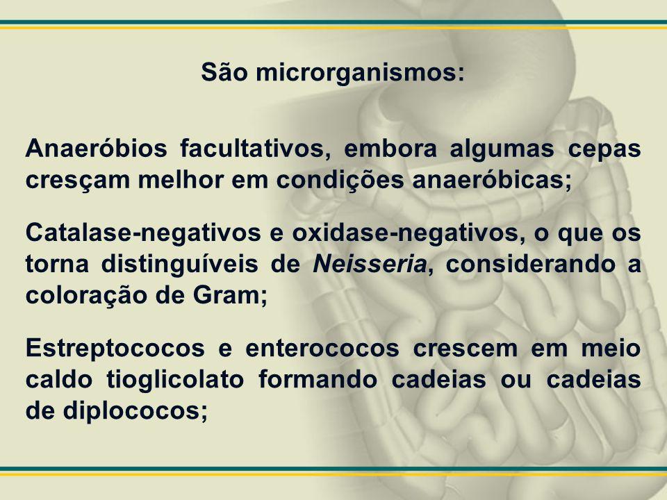 São microrganismos: Anaeróbios facultativos, embora algumas cepas cresçam melhor em condições anaeróbicas; Catalase-negativos e oxidase-negativos, o q