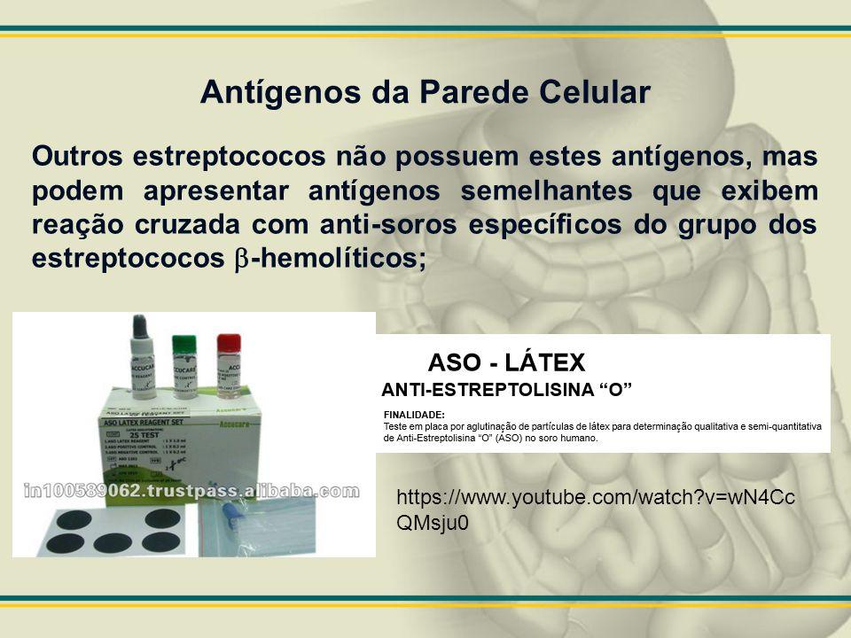 Antígenos da Parede Celular Outros estreptococos não possuem estes antígenos, mas podem apresentar antígenos semelhantes que exibem reação cruzada com
