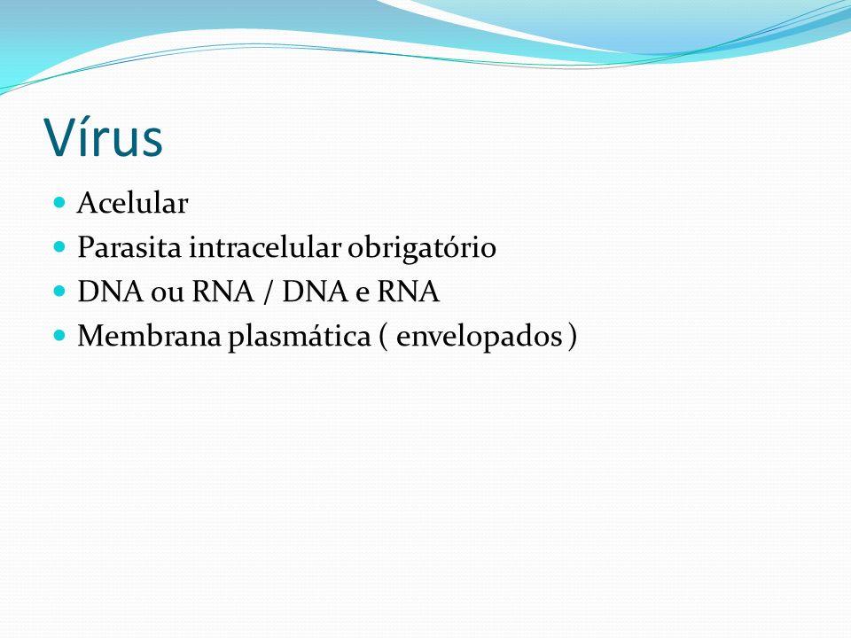Vírus Acelular Parasita intracelular obrigatório DNA ou RNA / DNA e RNA Membrana plasmática ( envelopados )