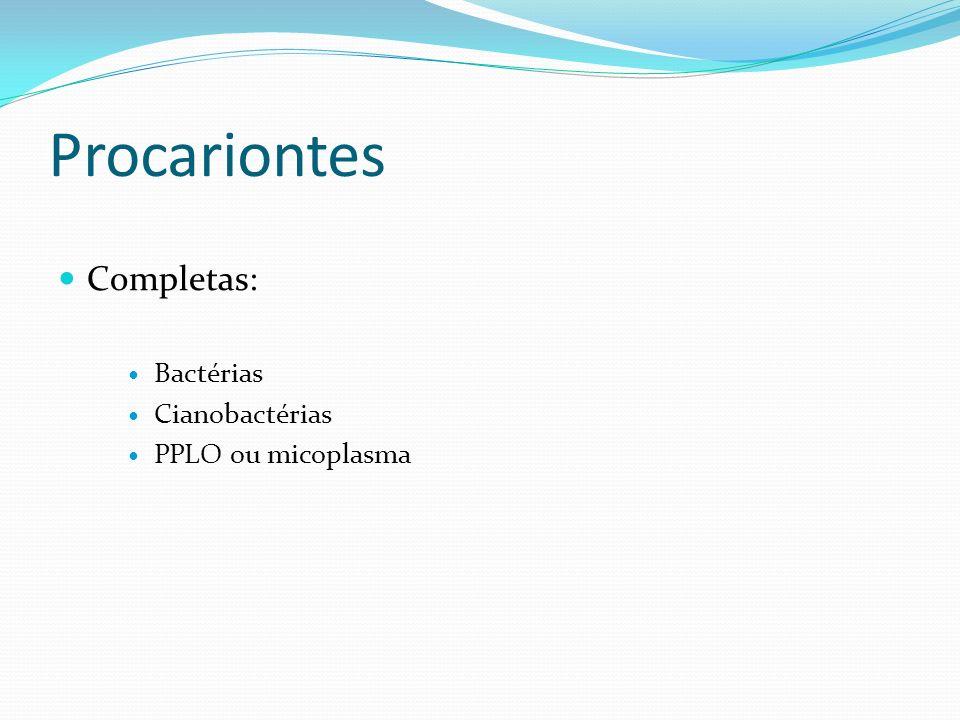 Procariontes Completas: Bactérias Cianobactérias PPLO ou micoplasma