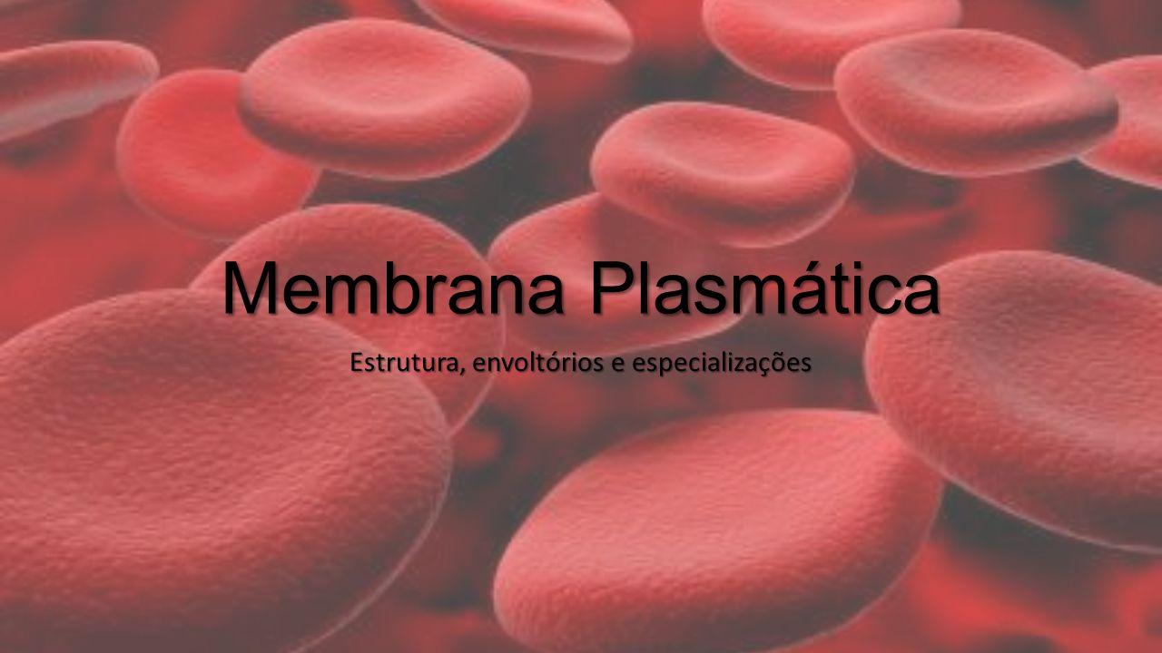 Membrana Plasmática Estrutura, envoltórios e especializações