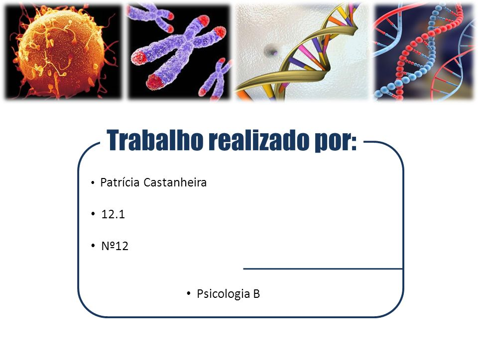 Trabalho realizado por: Patrícia Castanheira 12.1 Nº12 Psicologia B