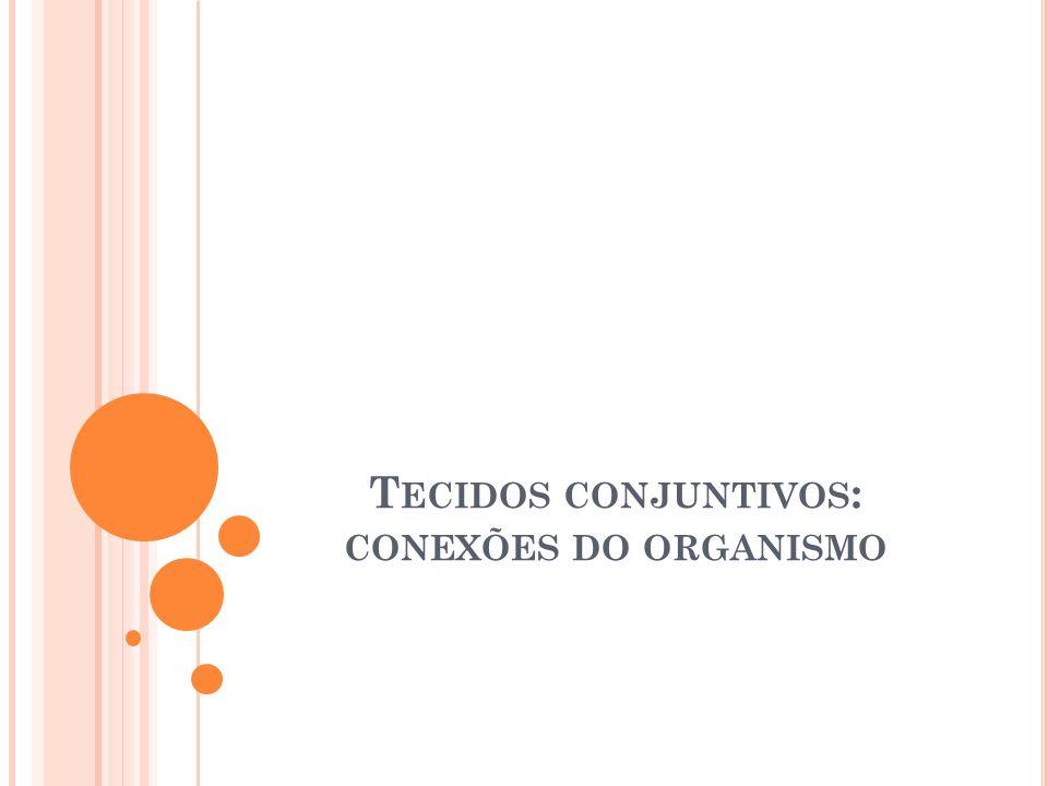 T ECIDOS CONJUNTIVOS : CONEXÕES DO ORGANISMO