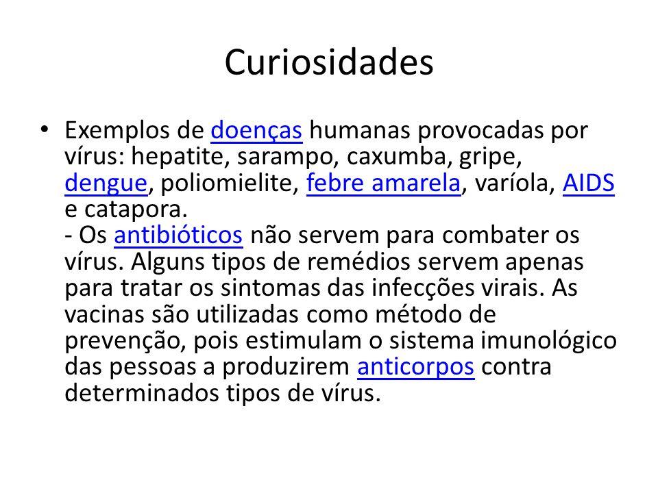 Curiosidades Exemplos de doenças humanas provocadas por vírus: hepatite, sarampo, caxumba, gripe, dengue, poliomielite, febre amarela, varíola, AIDS e