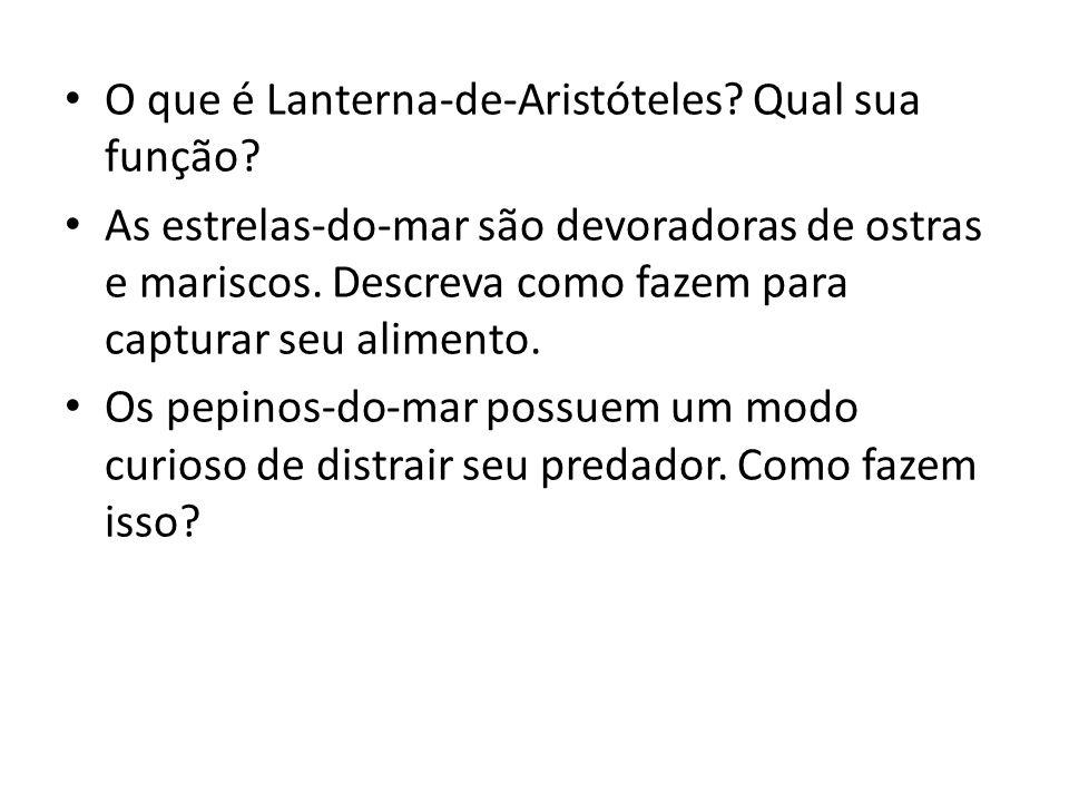 O que é Lanterna-de-Aristóteles? Qual sua função? As estrelas-do-mar são devoradoras de ostras e mariscos. Descreva como fazem para capturar seu alime