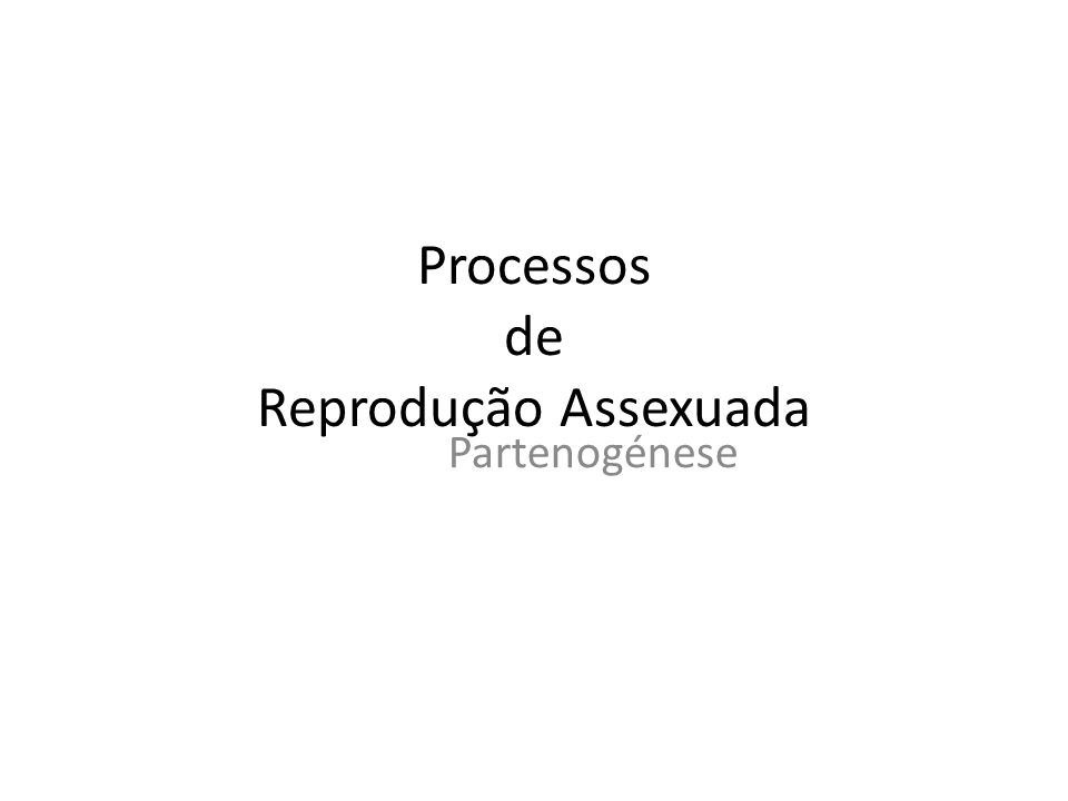 Processos de Reprodução Assexuada Partenogénese