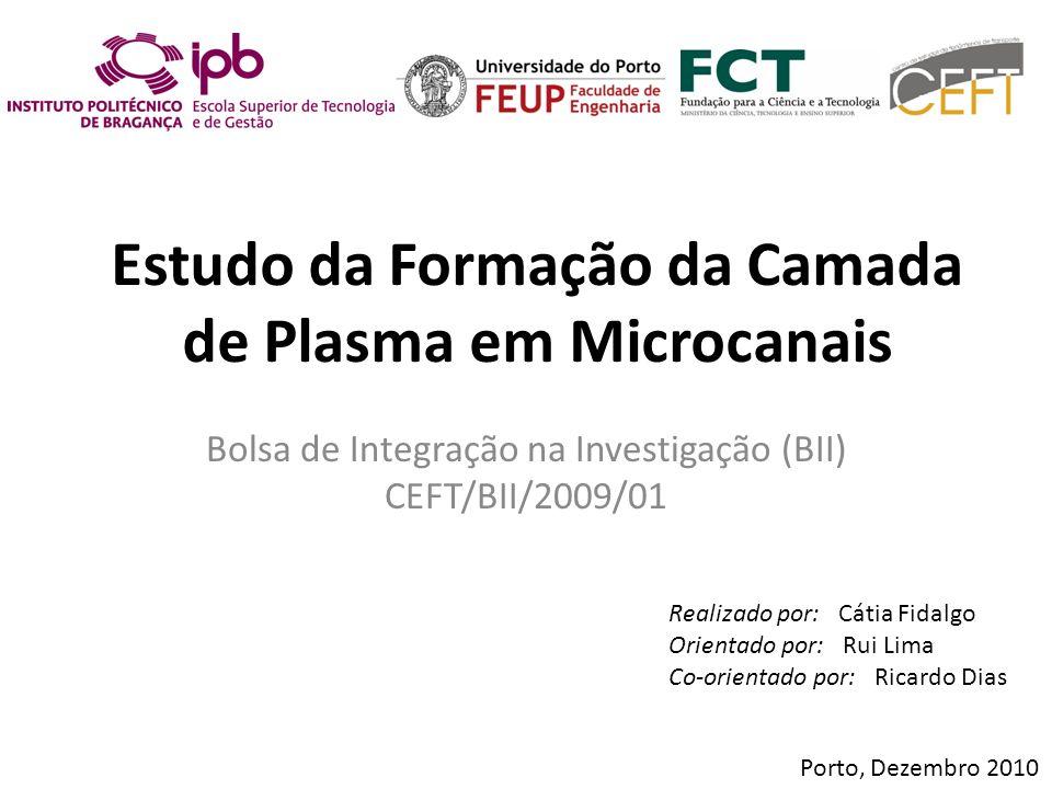 Estudo da Formação da Camada de Plasma em Microcanais Bolsa de Integração na Investigação (BII) CEFT/BII/2009/01 Porto, Dezembro 2010 Realizado por: C