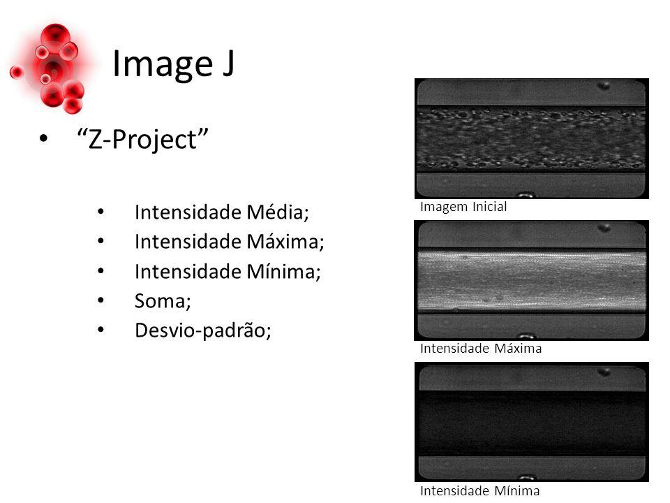 Image J Z-Project Intensidade Média; Intensidade Máxima; Intensidade Mínima; Soma; Desvio-padrão; Intensidade Máxima Intensidade Mínima Imagem Inicial