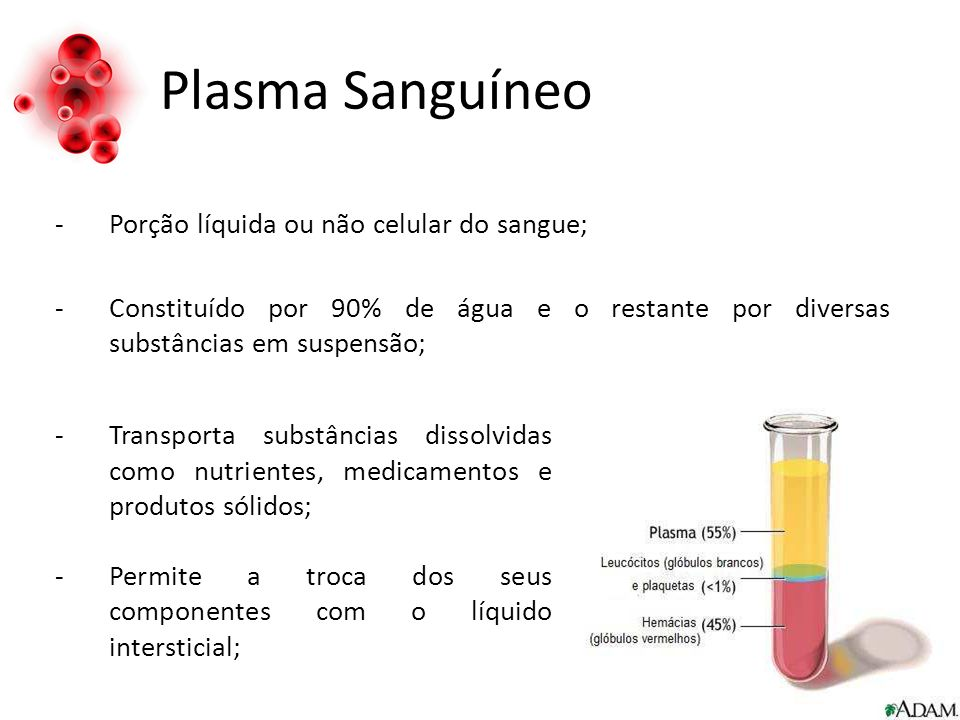 Plasma Sanguíneo -Porção líquida ou não celular do sangue; -Constituído por 90% de água e o restante por diversas substâncias em suspensão; -Transporta substâncias dissolvidas como nutrientes, medicamentos e produtos sólidos; -Permite a troca dos seus componentes com o líquido intersticial;