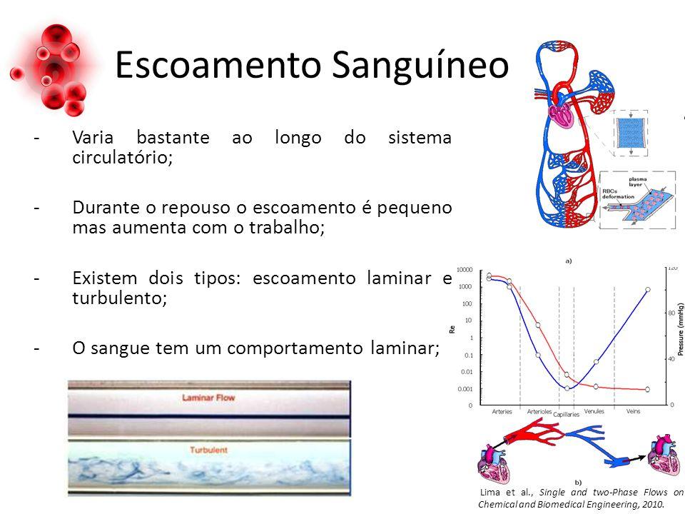 Escoamento Sanguíneo -Varia bastante ao longo do sistema circulatório; -Durante o repouso o escoamento é pequeno mas aumenta com o trabalho; -Existem
