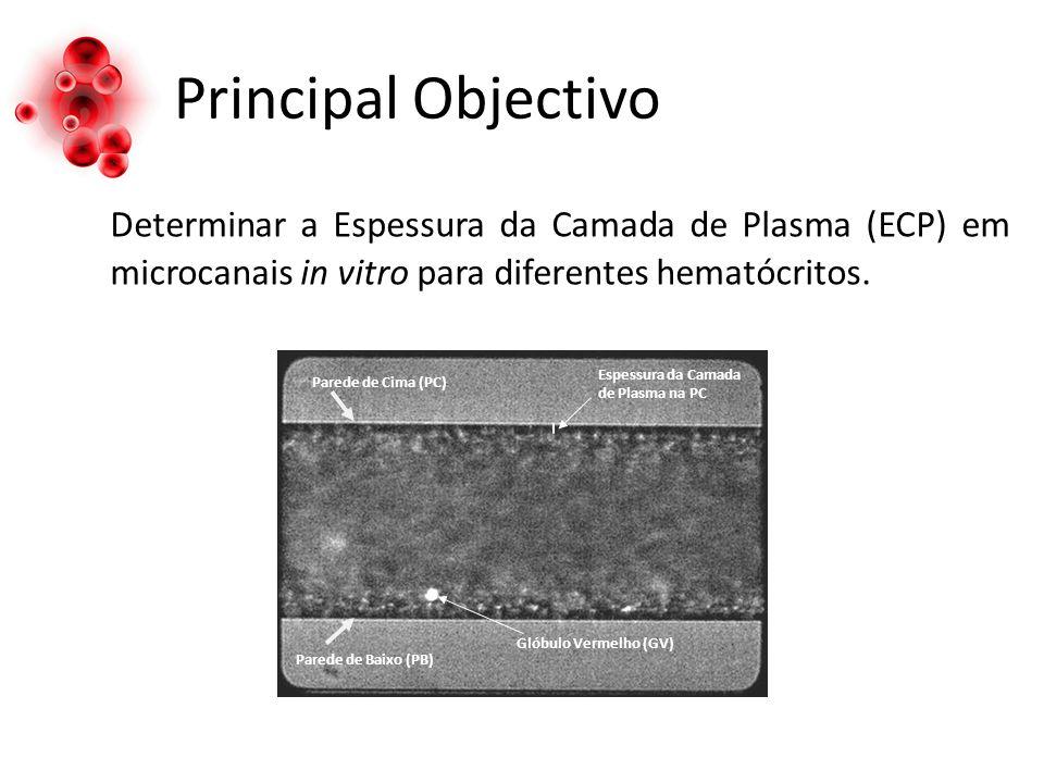 Principal Objectivo Determinar a Espessura da Camada de Plasma (ECP) em microcanais in vitro para diferentes hematócritos. Parede de Cima (PC) Espessu