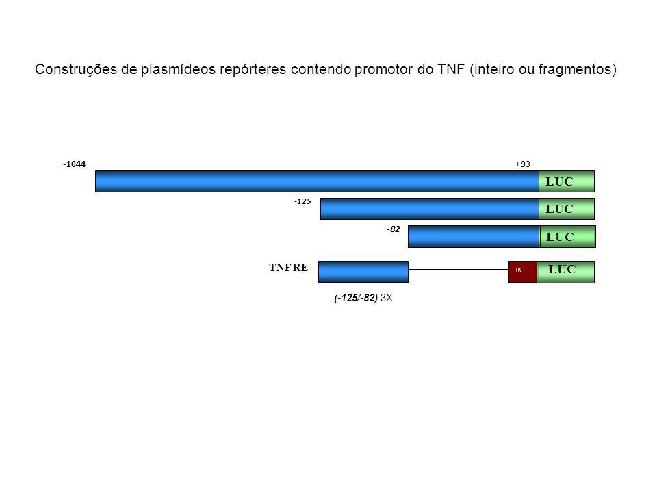 Construções de plasmídeos repórteres contendo promotor do TNF (inteiro ou fragmentos) -125 LUC -82 TNF RE LUC -1044 (-125/-82) 3X +93 LUC TK LUC