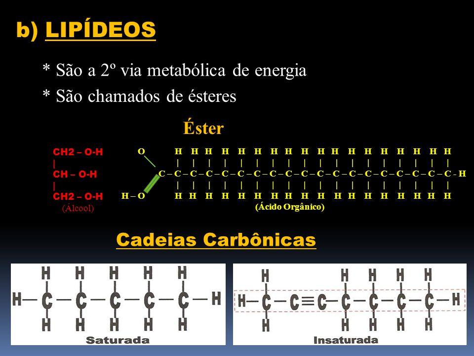 b) LIPÍDEOS * São a 2º via metabólica de energia * São chamados de ésteres CH2 – O-H   CH – O-H   CH2 – O-H (Álcool) O H H H H H H H H H H H H H H H H