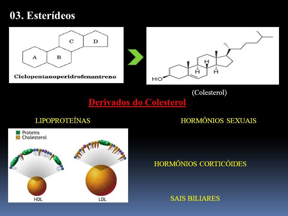 03. Esterídeos (Colesterol) Derivados do Colesterol LIPOPROTEÍNAS HORMÔNIOS SEXUAIS HORMÔNIOS CORTICÓIDES SAIS BILIARES