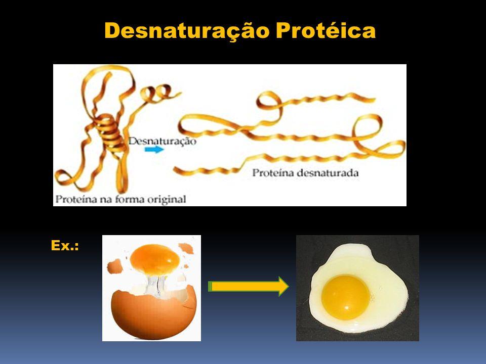 Desnaturação Protéica Ex.: