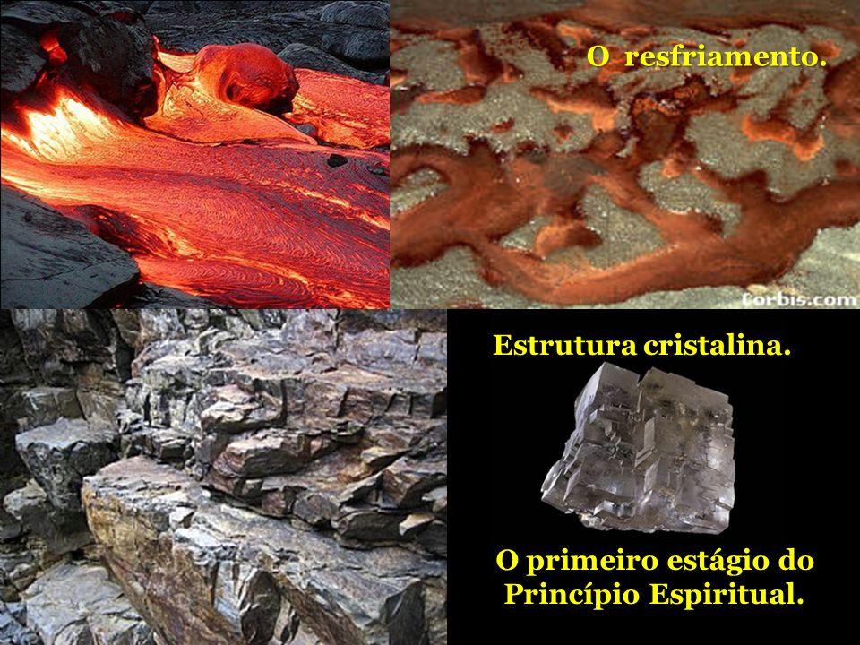 A Terra estava vazia e nua. O magma do interior fundido jorrava em profusão. O resfriamento. As formações rochosas. Estrutura cristalina. O primeiro e