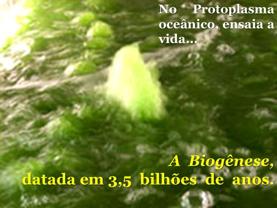 No Protoplasma oceânico, ensaia a vida... A Biogênese, datada em 3,5 bilhões de anos.