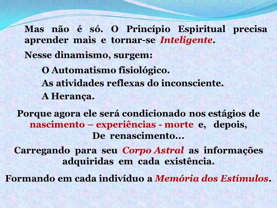 Mas não é só. O Princípio Espiritual precisa aprender mais e tornar-se Inteligente. Nesse dinamismo, surgem: Porque agora ele será condicionado nos es