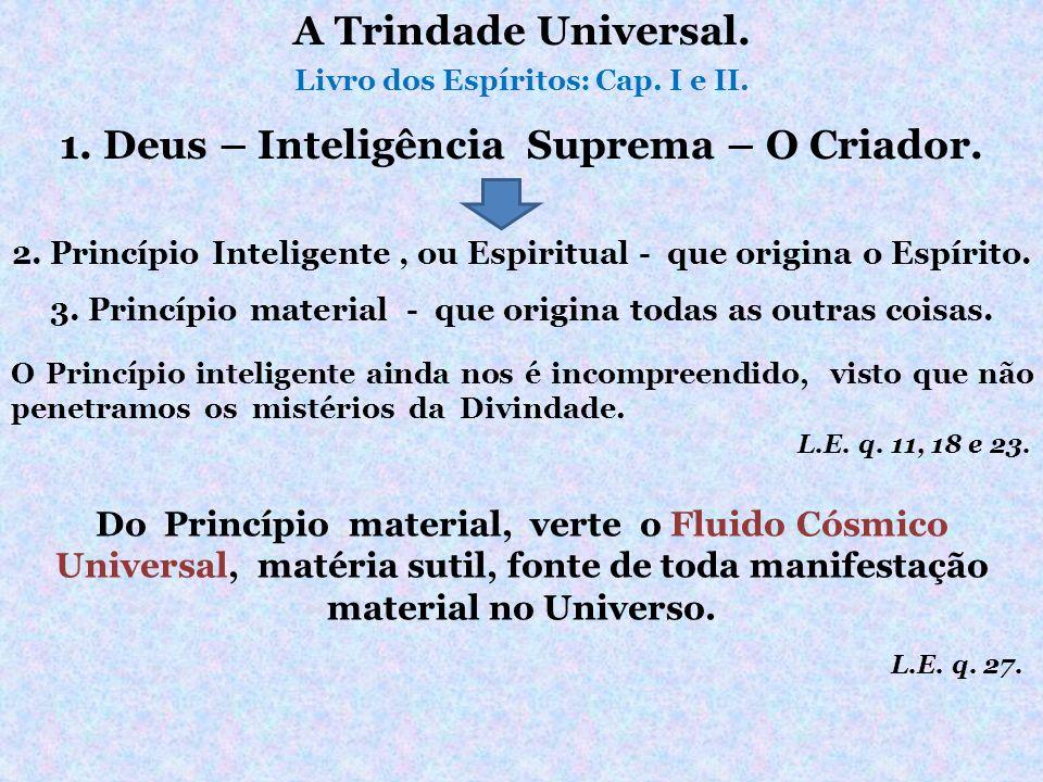 2. Princípio Inteligente, ou Espiritual - que origina o Espírito. Do Princípio material, verte o Fluido Cósmico Universal, matéria sutil, fonte de tod