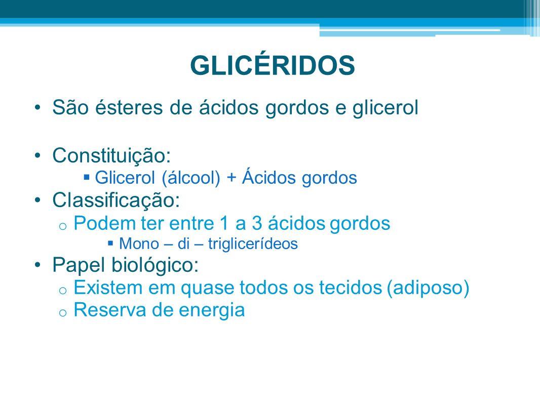 GLICÉRIDOS São ésteres de ácidos gordos e glicerol Constituição: Glicerol (álcool) + Ácidos gordos Classificação: o Podem ter entre 1 a 3 ácidos gordos Mono – di – triglicerídeos Papel biológico: o Existem em quase todos os tecidos (adiposo) o Reserva de energia