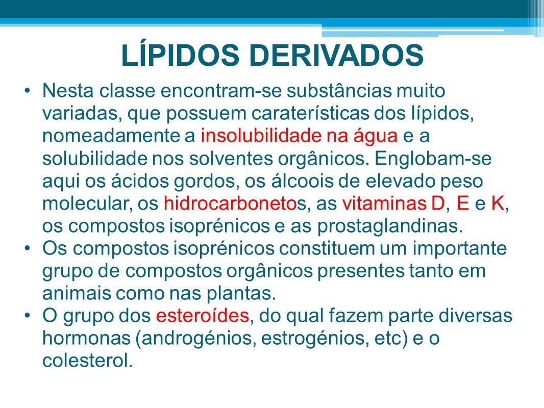 LÍPIDOS DERIVADOS Nesta classe encontram-se substâncias muito variadas, que possuem caraterísticas dos lípidos, nomeadamente a insolubilidade na água e a solubilidade nos solventes orgânicos.