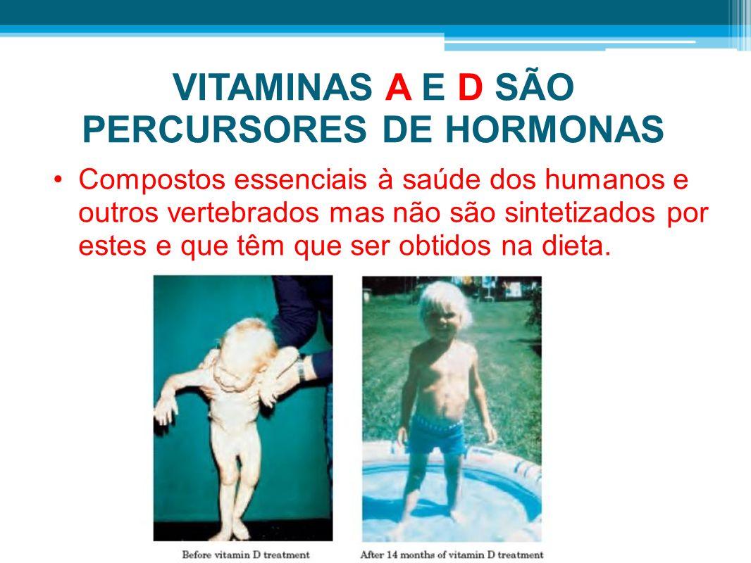 VITAMINAS A E D SÃO PERCURSORES DE HORMONAS Compostos essenciais à saúde dos humanos e outros vertebrados mas não são sintetizados por estes e que têm que ser obtidos na dieta.