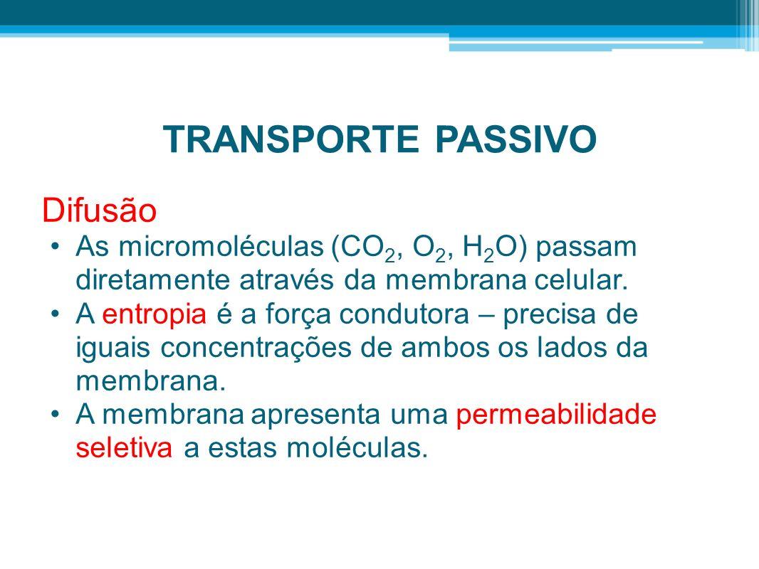 TRANSPORTE PASSIVO Difusão As micromoléculas (CO 2, O 2, H 2 O) passam diretamente através da membrana celular. A entropia é a força condutora – preci
