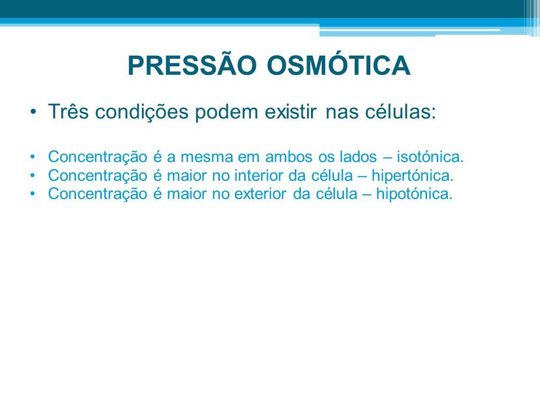 PRESSÃO OSMÓTICA Três condições podem existir nas células: Concentração é a mesma em ambos os lados – isotónica. Concentração é maior no interior da c