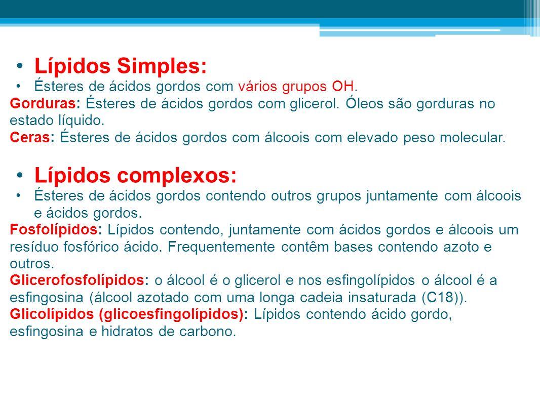 Lípidos Simples: Ésteres de ácidos gordos com vários grupos OH.